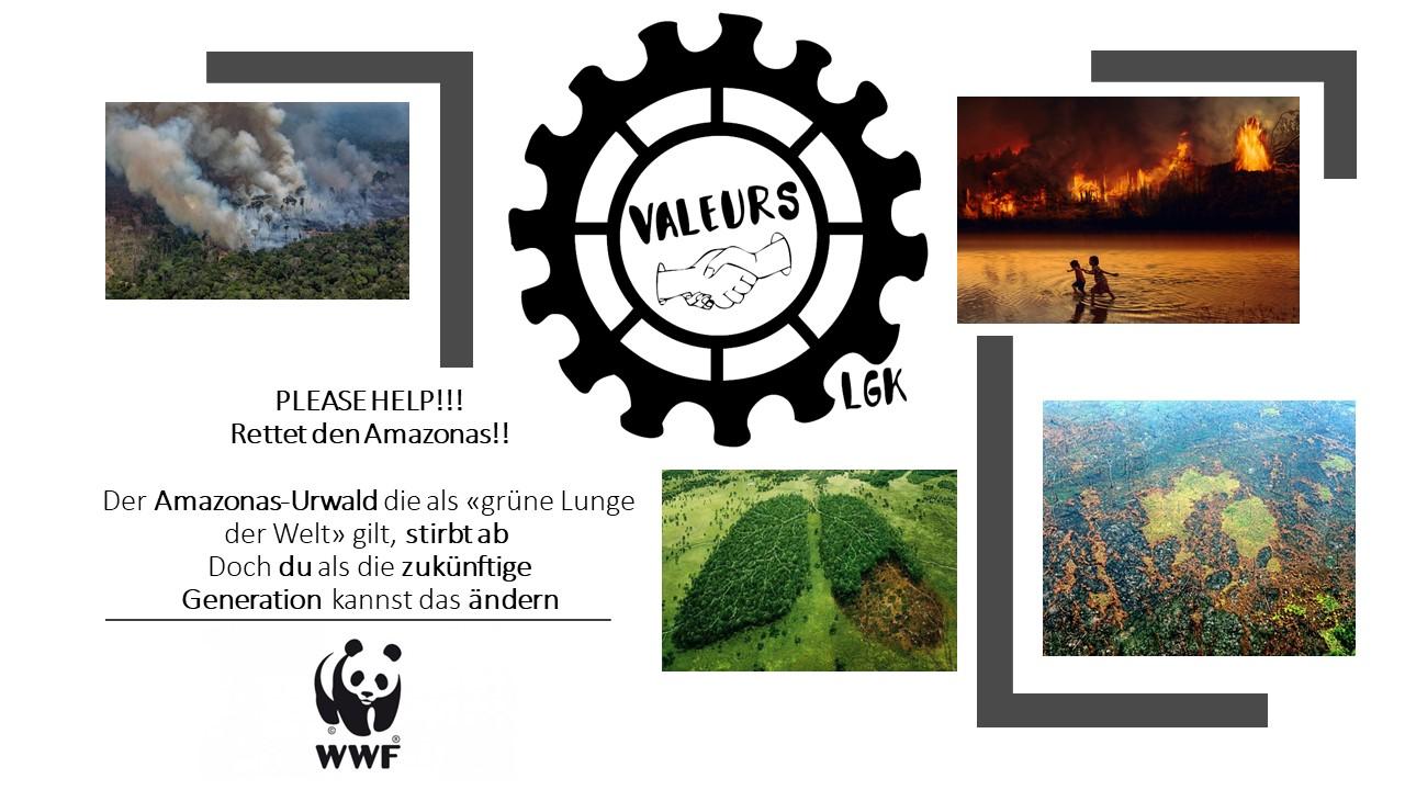 """Projet du groupe Valeurs du LGK """"Sauvez l'Amazonie"""""""